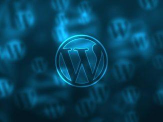 WordPress Process From The Start